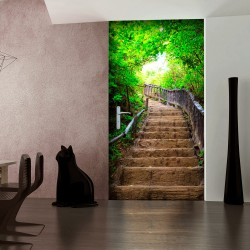 Photo wallpaper on the door  Photo wallpaper – Stairs from nature I