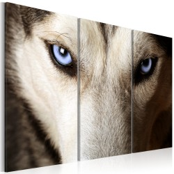 Canvas Print  Face to face with fear