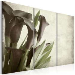 Canvas Print  callas  vintage
