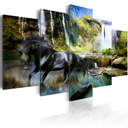 Canvas Print  Black horse on the background of paradise waterfall