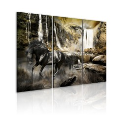 Canvas Print  Black horse and rocky waterfall