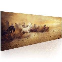 Canvas Print  City of stallions