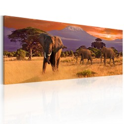 Canvas Print  March of african elephants