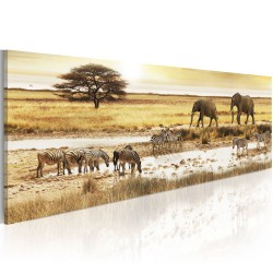 Canvas Print  Africa at the waterhole