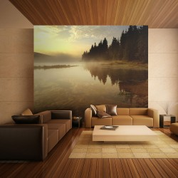 Wallpaper  Forest and lake