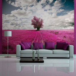 Wallpaper  Magenta meadow