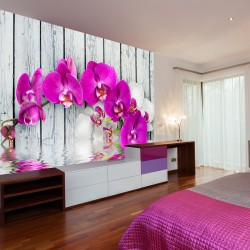 Wallpaper  Violet orchids with water reflexion