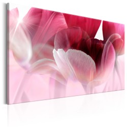 Canvas Print  Nature Pink Tulips