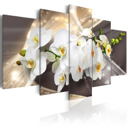 Canvas Print  Golden Sash