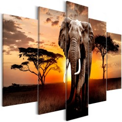 Canvas Print  Wandering Elephant (5 Parts) Wide
