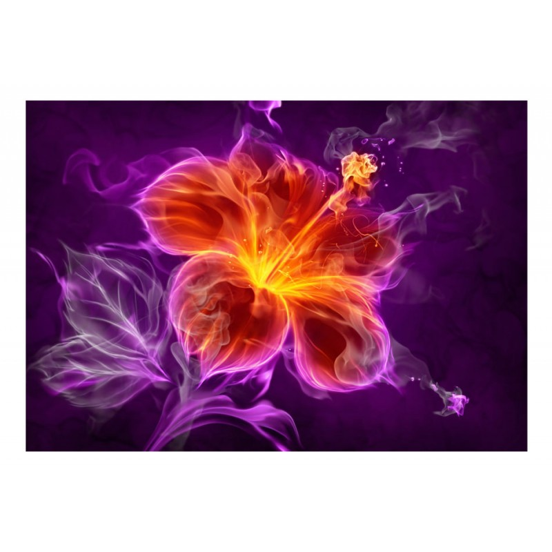 Wallpaper - Fiery flower in purple - Alter GM