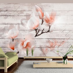 Wallpaper  Subtlety of the Magnolia
