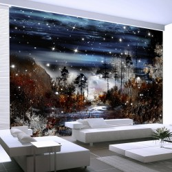 Wallpaper  Night in the forest