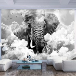Wallpaper  Elephant in the Clouds (Black and White)