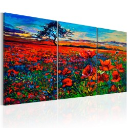Canvas Print  Valley of Poppies