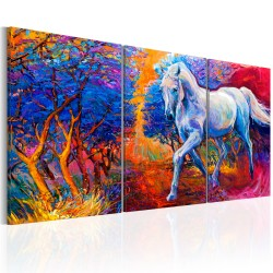 Canvas Print  Valley of Fantasy