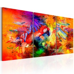 Canvas Print  Colourful Parrot