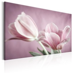 Canvas Print  Romantic Tulips