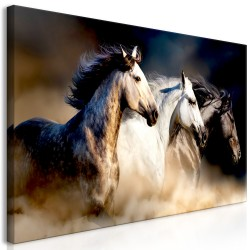 Canvas Print  Sons of the Wind (1 Part) Wide