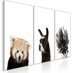 Canvas Print  Friendly Animals (Collection)