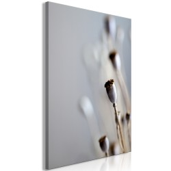 Canvas Print  Dried Poppies (1 Part) Vertical