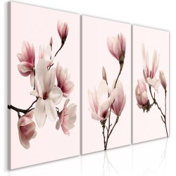 Canvas Print  Spring Magnolias (3 Parts)