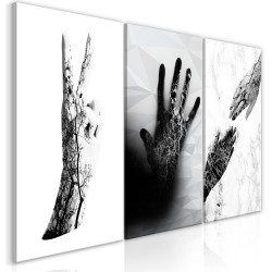 Canvas Print  Female Hands (3 Parts)