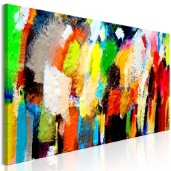 Canvas Print  Colourful Variations