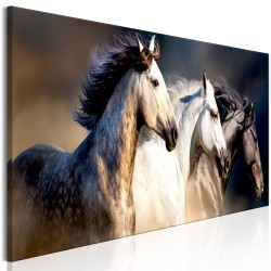 Canvas Print  Sons of the Wind (1 Part) Narrow
