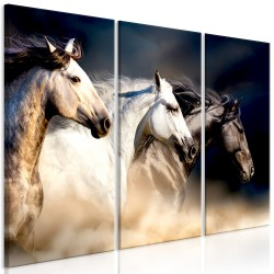 Canvas Print  Sons of the Wind (3 Parts)
