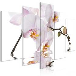 Canvas Print  Delightful Orchid (5 Parts) Wide