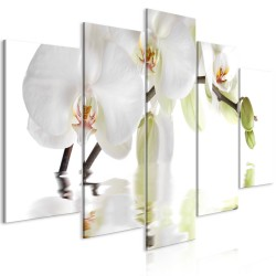Canvas Print  Wonderful Orchid (5 Parts) Wide