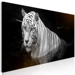 Canvas Print  Shining Tiger (1 Part) Orange Narrow