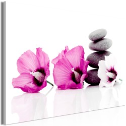 Canvas Print  Calm Mallow (1 Part) Wide Pink