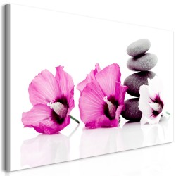 Canvas Print  Calm Mallow (1 Part) Pink