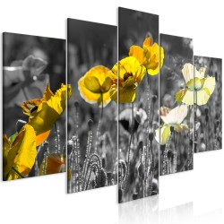 Canvas Print  Yellow Poppies (5 Parts) Wide