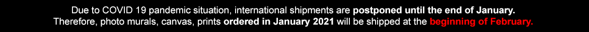 Due to COVID 19 pandemic situation, international shipments are postponed until the end of January. Therefore, canvas, wallpapers, etc. ordered in January 2021 will be shipped in the beginning of February.